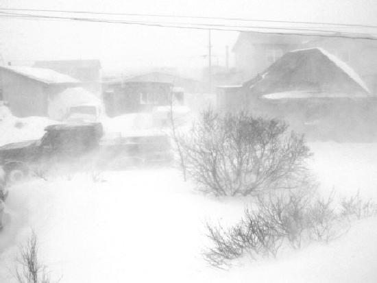 severe wx blizzards and cold waves